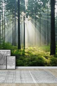 Wall Mural Sunrise In A Forest Wall Paper Self Adhesive 90 Best Forest Wall Murals Images On Pinterest Wallpaper Designs
