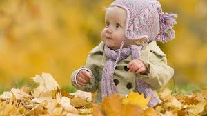 cute fall wallpapers google image result for http best wallpaper net wallpaper