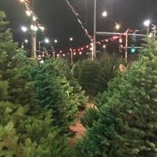 holman road christmas trees christmas trees 10031 holman rd nw