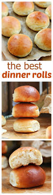 best 25 dinner rolls ideas on bread rolls