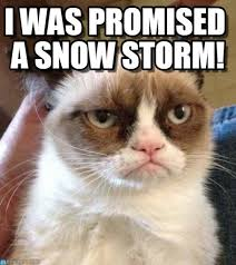 Snowstorm Meme - i was promised a snow storm grumpy cat reverse meme on memegen