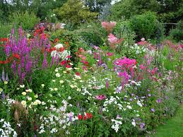 Landscape Flower Bed Ideas by Garden Flower Boarders Garden Maintenance And Landscape Services