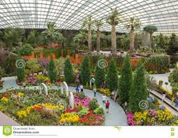 beautiful and enormous botanical garden in singapore with any