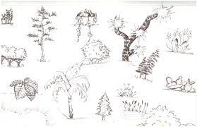 practice plant sketches u2013 garten designs