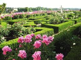 Map Of Florence Italy Rose Garden Boboli Gardens Florence Italy The Culture Map