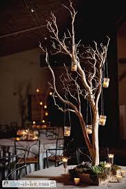 Tree Branch Centerpiece by 118 Best Manzanita Branches Images On Pinterest Manzanita