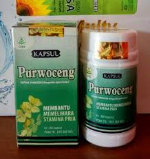 herbal kapsul purwoceng 0812 1234 8374 herbal kejantanan asli