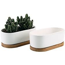 white ceramic rectangular cactus tray planter 34 cm long amazon