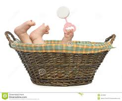 baby baskets baby in basket royalty free stock photo image 4618965