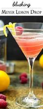 martini raspberry blushing meyer lemon drop martini just a little bit of bacon