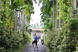 riverbanks botanical garden water coconuts in mekong delta we just travel