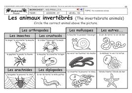 free printable worksheets vertebrates invertebrates french ks2 level 3 ks3 year 7 vertebrate and invertebrate