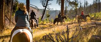 adventure horseback rides triple creek ranch