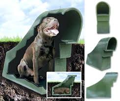cool dog houses cool dog house designs cool indoor dog house designs dog house