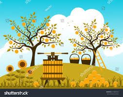 vector fruit press baskets apples apple stock vector 219802924