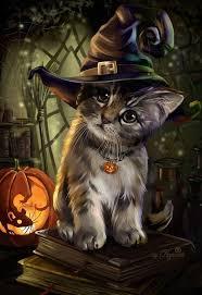 halloween kittens 230 best holiday pups u0026 kittens too images on pinterest