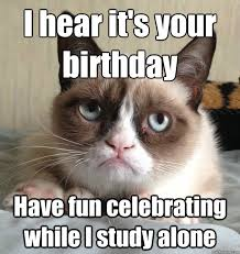 i hear it s your birthday cat meme cat planet cat planet