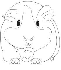 pet best guinea pig coloring pages coloring page and coloring