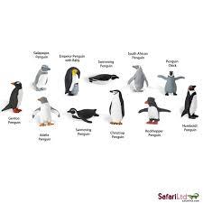 montessori inspired continent activities penguins of antarctica