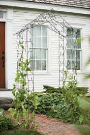 Metal Arbors 127 Best A Wedding Arch Images On Pinterest Wedding Arches
