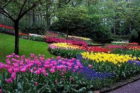 imagenes de jardines pequeños con flores de 100 fotos con ideas de decoracin de jardines with flores para