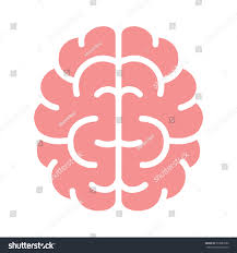 color of intelligence brain mind intelligence flat color icon stock vector 533987080