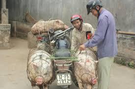 vietnam abm aventure du bout du monde