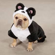 White Dog Halloween Costume 23 99 23 99 Casual Canine Black U0026 White Panda Bear Pup Plush Dog