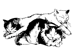 cat color pages printable sleeping cats coloring ready