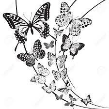 monochrome butterflies design on floral background royalty free