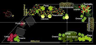 small garden plan my balcony container vegetable garden getting