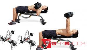 Bench Press For Beginners How To Do A Bench Press Beginner U0027s Guide Gym Shock Fitness