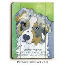 australian shepherd gifts australian shepherds dog pictures dog art dog prints gifts for