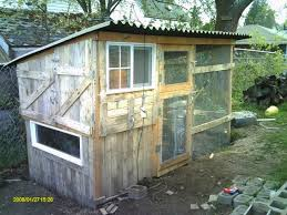 Backyard Chickens Forum by 172 Best Chickens Images On Pinterest Chicken Coops Backyard