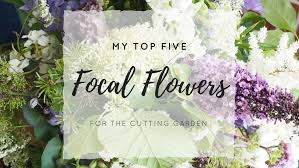 my top 5 focal flowers for the cutting garden u2014 sarah hill flowers