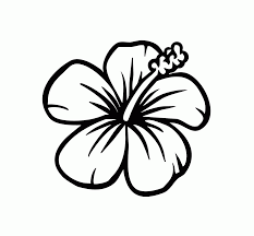 printable coloring pages of hawaiian flowers coloring home