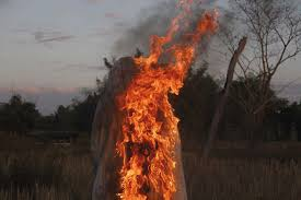 Wildfire Edinburgh Book by Images On Fire Apichatpong Weerasethakul U2022mousse Magazine