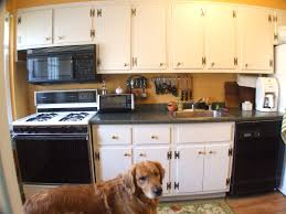 Inexpensive Kitchen Cabinets Kitchen Furniture Duco Jpg Kitchen Cabinets Prices In Kerala Best