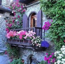 blumen fã r balkon 220 besten balkon bilder auf fenster und türen treppe