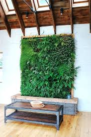 diy living wall indoors room vibrant tropical indoor how to make a