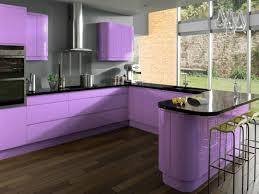 Purple Kitchen Cabinets Modern Kitchen Color Schemes Kitchen Mesmerizing Modern Inspiration Decorations Cabinets
