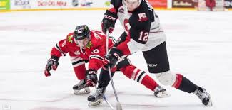 Players Bench Prince George Hours Portland Winterhawks Vs Prince George Cougars U2013 Round 1 Preview