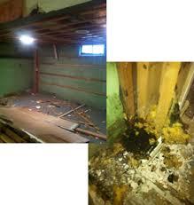 basement demolition costs healthy spaces interior demolition repairs