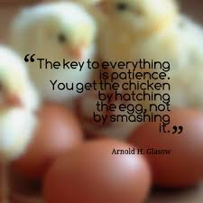 Don Count The Chicken Before They Hatch Quote Don T Count Your Chickens Before They Hatch Like Success