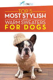top 5 best dog sweaters for warmth u0026 style u2013 top dog tips