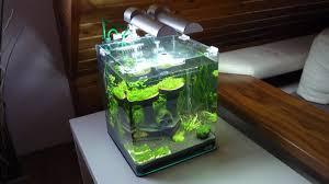 Wohnzimmertisch Aquarium Nano Aquarium Tierwelt Einebinsenweisheit