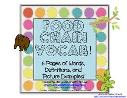 food chain unit vocabulary and matching worksheet by just