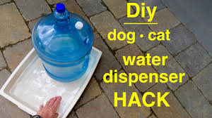 how to make a dog cat large self filling water