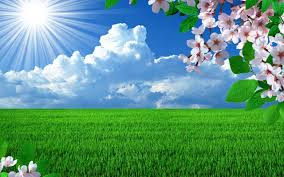 so beautiful hd wallpaper free spring season hd wallpaper