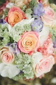 olympia flowers in boston flower shop near me sheilahight